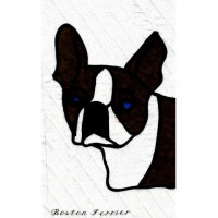 My Dog SeriesBoston Terrier - Product Image